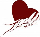picture of healing hands  - A heart shape with in a hand with veins symbol illustration - JPG