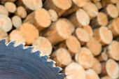 Pile Of Firewood. Wall Firewood, Background Of Dry Chopped Firewood Logs In A Pile. Preparation Of F poster
