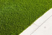 Newly Installed Artificial Grass Next To Walkway. poster