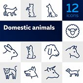 Domestic Animals Icons. Set Of Line Icons On White Background. Dog, Sheep, Rabbit, Cat, Cow, Horse.  poster