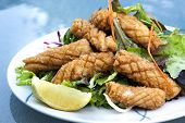 picture of squid  - Calamari salad with lemon - JPG