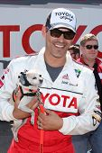 LOS ANGELES - APR 3:  Eddie Cibrian with assistance dog at the 2012 Toyota Pro/Celeb Race Press Day