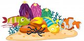 coral reef scene illustration