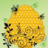image of bumble bee  - Honeycomb bee hive with flourish vine - JPG