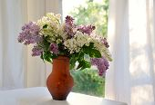 bunch of lilac in ceramic jug against summer window