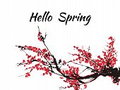 Cherry Blossom Hello Spring Card Or Banner With Hand Drawn Branch Of Red Cherry Flowers Blooming.  S poster