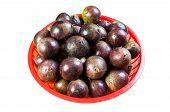 Caimito fruta viene con color verde o púrpura; es una fruta muy común entre cuenta tropical