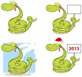 Snake Cartoon Mascot Characters Collection