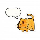 cartoon ill cat