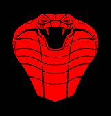 picture of king cobra  - red black cobra  - JPG