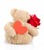 Photo of beautiful soft toy isolated on white background, back side of teddy bear holding red fresh