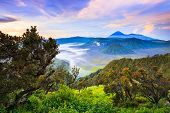 image of bromo  - Bromo volcano at sunriseTengger Semeru national park East Java Indonesia - JPG