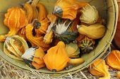 Diverse assortment of gourds--winged
