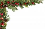 Christmas background floral border with natural holly, mistletoe, ivy, cedar leaf sprigs and pine co