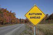 Autumn ahead road sign