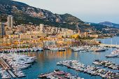 pic of dwarf  - The Principality of Monaco  - JPG
