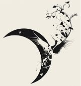 Bird and moon design