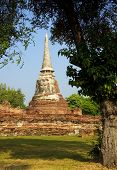 View Of The Ruins Of Wat Mahathat