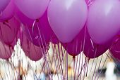 Pink Purple Ballons