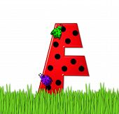 Alphabet Lady Bug Red F
