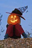 Halloween Pumpkin Head Witch