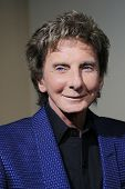 LOS ANGELES - MAR 20: Barry Manilow at the 2nd Annual Rebels With A Cause Gala at Paramount Studios