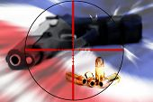 American right to keep and bear arms attached by crosshairs