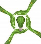 Hand holding ecology light bulb energy concept