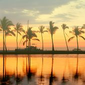 Tropical paradise beach sunset with palm trees. Summer travel holidays vacation getaway colorful con