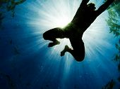 Man swimming in the sea with sunbeams shining through, seen from below.