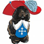 stock photo of muskets  - hipster Portuguese Water Dog in a red musketeer hat - JPG