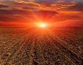 stock photo of plowed field  - sunset over plugged field - JPG