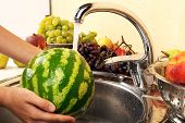Woman's hands washing watermelon and other fruits in colander in sink