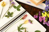 Composition with flowers and dry up plants on notebook on table close up