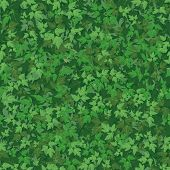 Seamless background, maple leaves