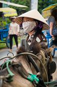 Vietnamese Woman Standing By A Horse