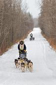 Beargrease 2015 Marathon Ryan Anderson On Trail