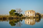 picture of farmhouse  - Old farmhouse and its reflection in Albufera lagoon Valencia Spain - JPG
