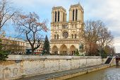 picture of notre dame  - The Christmas tree in front of main west facade of Cathedral of Notre Dame de Paris - JPG