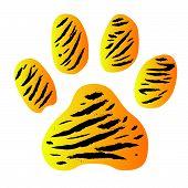 Tiger Footprint