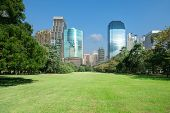 City Park With Modern Building Background