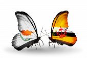 Two Butterflies With Flags On Wings As Symbol Of Relations Cyprus And Brunei