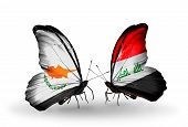 foto of iraq  - Two butterflies with flags on wings as symbol of relations Cyprus and Iraq - JPG