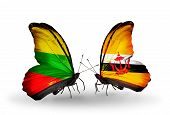 Two Butterflies With Flags On Wings As Symbol Of Relations Lithuania And Brunei