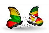 Two Butterflies With Flags On Wings As Symbol Of Relations Lithuania And Zimbabwe