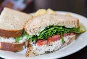 pic of tomato sandwich  - A toasted chicken salad sandwich garnished with lettuce and tomato - JPG