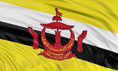 3D Brunei flag