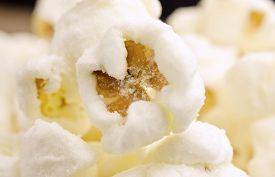 image of sweet-corn  - Extremes close - JPG