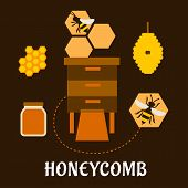 image of honey bee hive  - Honeycomb flat infographic design with bees flying near beehives - JPG