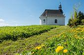 foto of chapels  - Rural baroque chapel on the horizon  - JPG